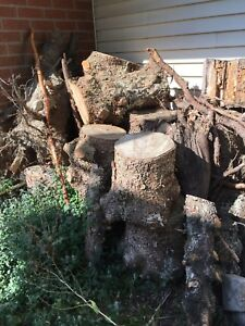 Free pile of blue spruce logs