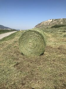 2018 hay for sale round bales