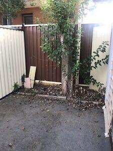 Granny flat in belmore $250