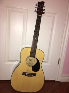 Jay Turser guitar and voyageur case