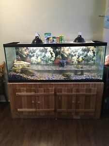 Turtle/Fish tank For Sale