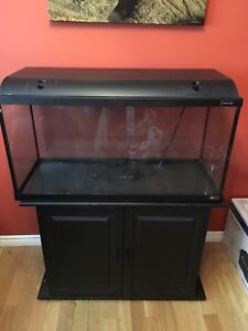 Fish/ Reptile tank and all accessories