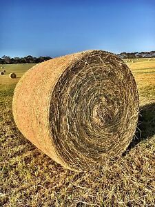 HAY FOR SALE Myponga Yankalilla Area Preview