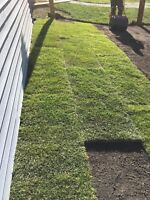 Landscaping services best price in town