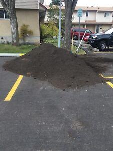 Free Screened Black Dirt