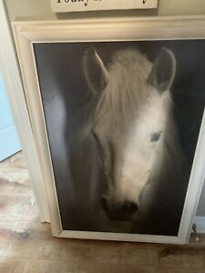 $25 horse picture frame ( wood)