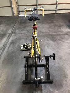 Giant TCR Racing Bike