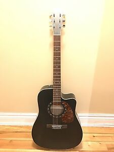 Acoustic guitar - Norman Protege B18CW