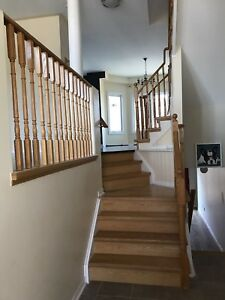Markham Newly Renovated Semi Detached House for rent