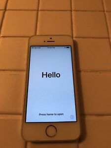 iPhone 5s 16 g Bell