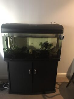 Aqua One 980 Tank (215L inbuilt filter u0026 lights) + matching Cabinet & aqua one 980 fish in New South Wales | Gumtree Australia Free ... azcodes.com