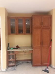 Cabinets + counter + sink + Oven + dish washer + lights