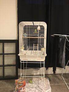 Cage avec accessoires pour oiseau, negociable