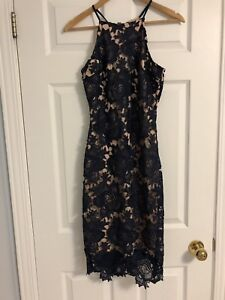 Envy Navy/Beige Lace Fitted Dress Small - Tags still On!