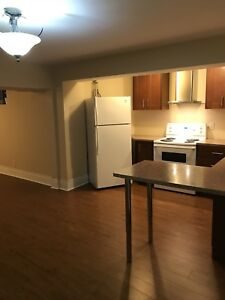 Newly renovated basement apartment for rent