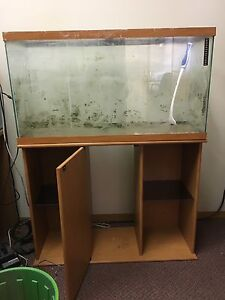 37 gallon fish tank with stand