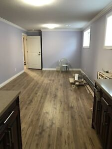 1 bedroom basement for rent now in white city