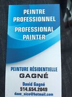 Peintre professionel / Professional painter