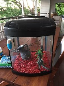 40L Fish Tank Taringa Brisbane South West Preview