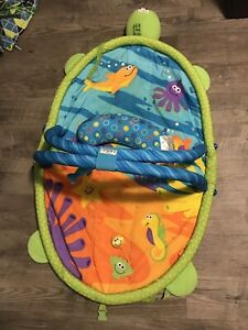 Play mat and tummy time pillow