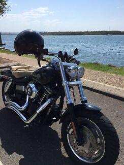 Harley Davidson Fatbob 2013 Sunshine Beach Noosa Area Preview