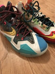 Lebron 11 What The Size 10