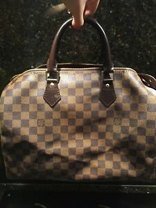 Lv Louis Vuitton speedy bag