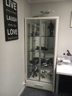Display case with down lights