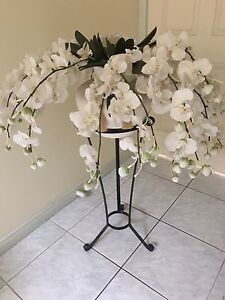 Artificial white orchids with stand Heidelberg Banyule Area Preview