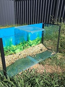 3ft Fish Tank Blue Haven Wyong Area Preview