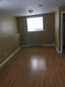 NEW PRICE!!!! 1 Bedroom Basement Apartment For rent
