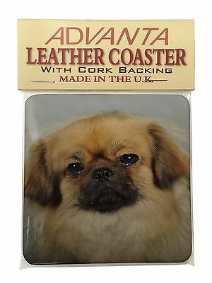Tibetan Spaniel Dog Single Leather Photo Coaster Animal Breed Gift, AD-TS2SC