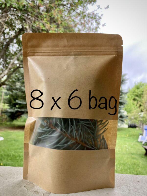 Organic PNW Pine Needle Tea 4oz Brew your own tea FRESH! Blue Spruce 2021