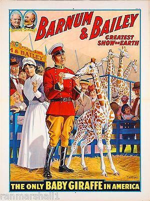1916 Barnum & Bailey Baby Giraffe Vintage Circus Advertisement Art Poster