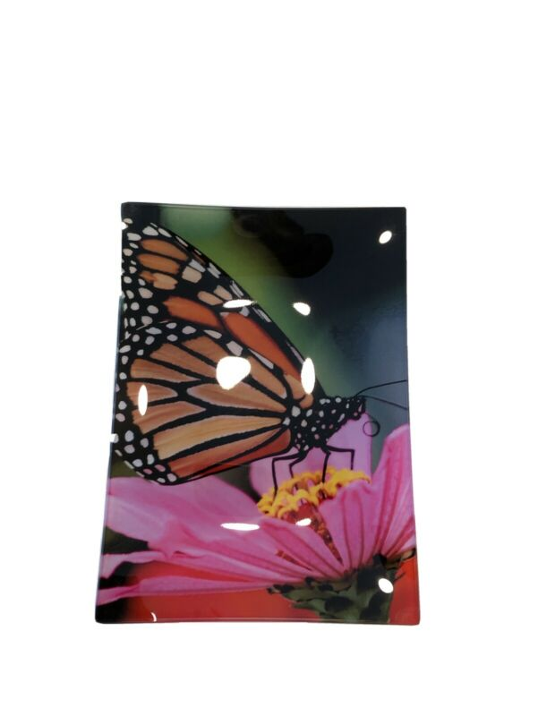 Butterfly pause glass plate