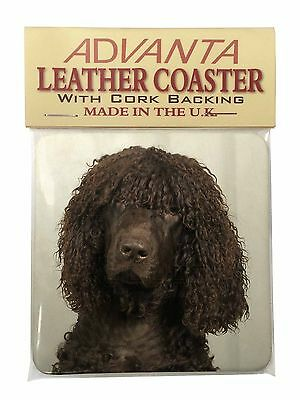 Irish Water Spaniel Dog Single Leather Photo Coaster Animal Breed Gift, AD-IWSSC