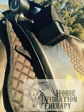 Horse Vibration Therapy Carey Gully Adelaide Hills Preview