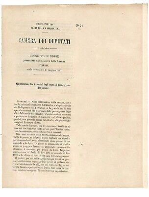 CAMERA DEI DEPUTATI 1867 CLASSIFICAZIONE CONCIMI SCARTI DI PENNE GROSSE POLLAME