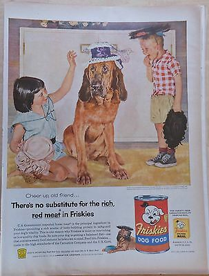 1955 magazine ad for Friskies Dog Food - Bloodhound plays