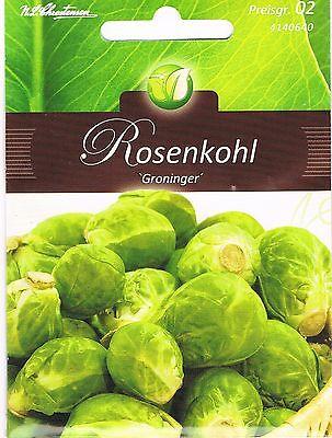 4140640  Rosenkohl Groninger spät Saatgut Samen Sämereien Gemüse