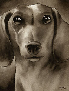 MINIATURE-DACHSHUND-Dog-Painting-ART-Signed-Artist-DJR