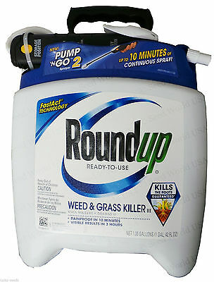 Roundup Ready To Use Weed & Grass Killer - 1.33 Gallons