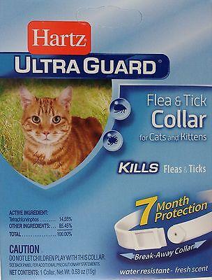 Kitten & Cat F & t Collar 80483