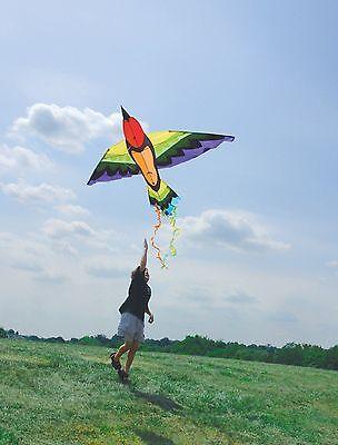 Kite Rainbow Bird Like Kite..14..... PR 44929