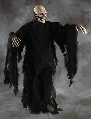 Studio C Halloween Party (Zagone Studios Rotting Gown Costume Adult One Size Black Zombie Monster)