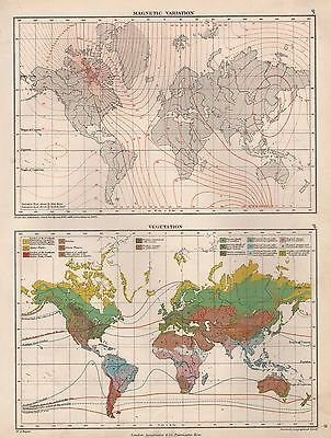 1889 ANTIQUE MAP WORLD MAGNETIC VARIATION VEGETATION 2 IMAGES