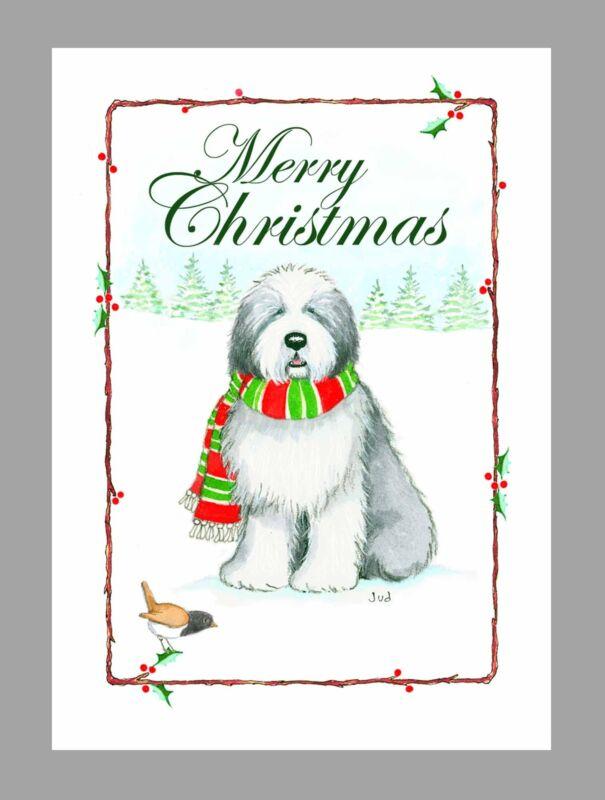 Old English Sheepdog Christmas Cards, Box of 16 Cards & 16 Envelopes