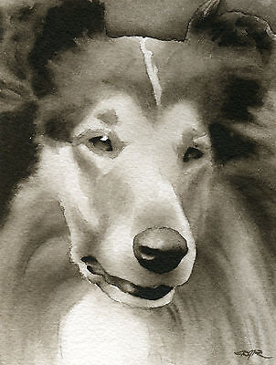 COLLIE Watercolor ART Print Signed by Artist DJR