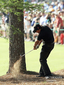 2010 PHIL MICKELSON MASTERS GOLF PINE NEEDLE SHOT 8x10 PHOTO