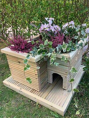 Handmade hedgehog house planter and hibernation base.